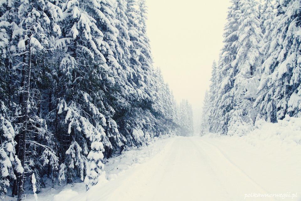Zima w Norwegii - tu dla odmiany Trysill - gdzie indziej mogłoby być tyle śniegu :)