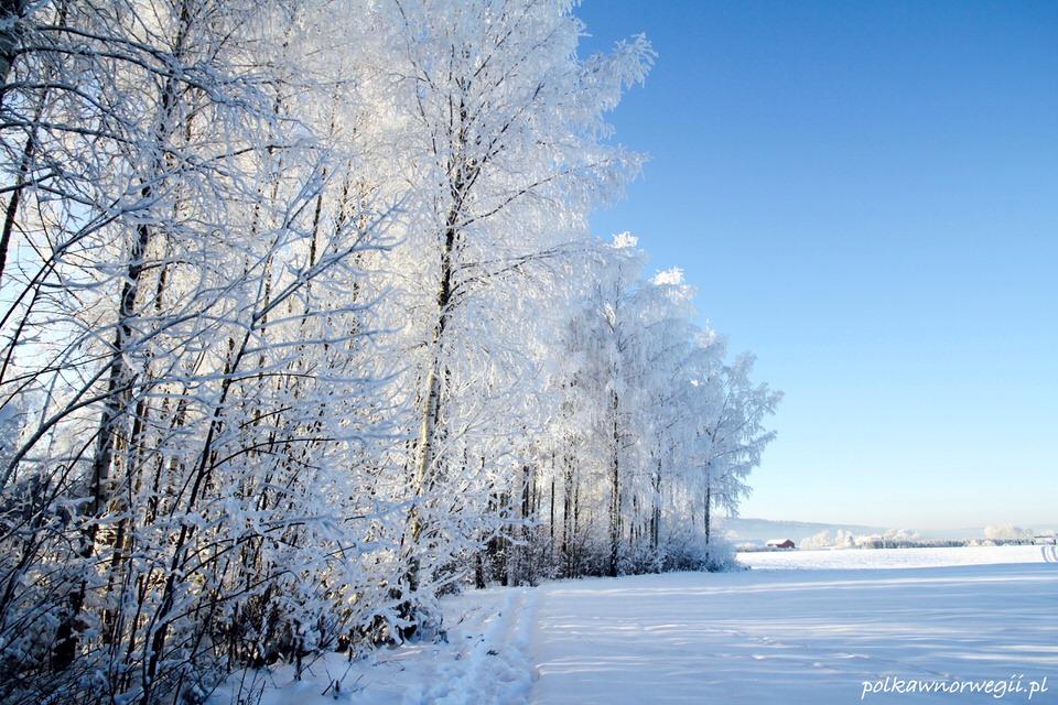Zima w Norwegii c.d.